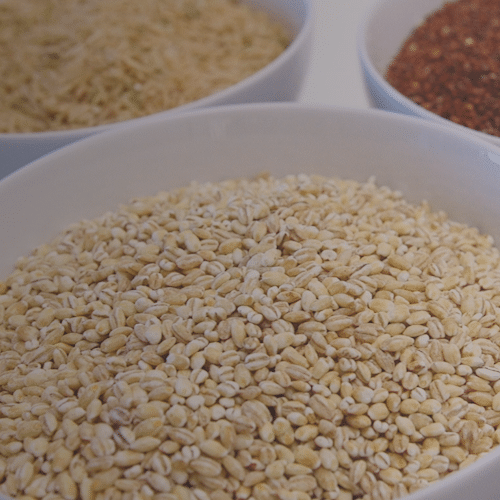 High Fiber Diet Header Image